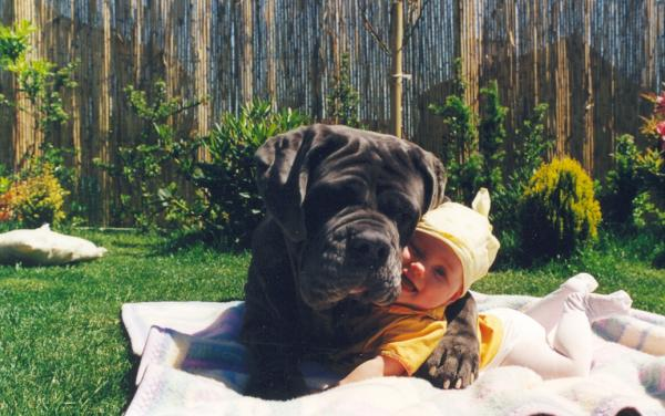 baby and dog sunbathing