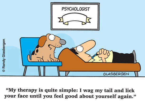 dog-psychology