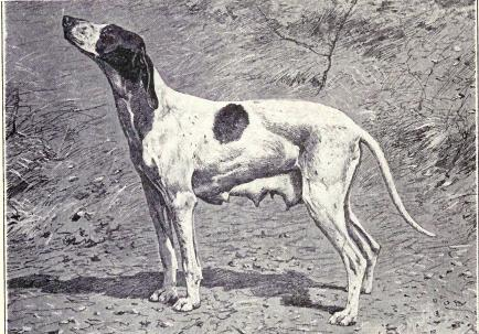 Dupuy_Pointer_from_1915